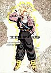Future Trunks:One of the first anime characters I became fan of.