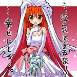 Vita Married awww :3 loli wedding?